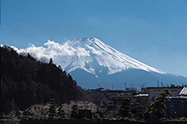 槙田商店 作業風景